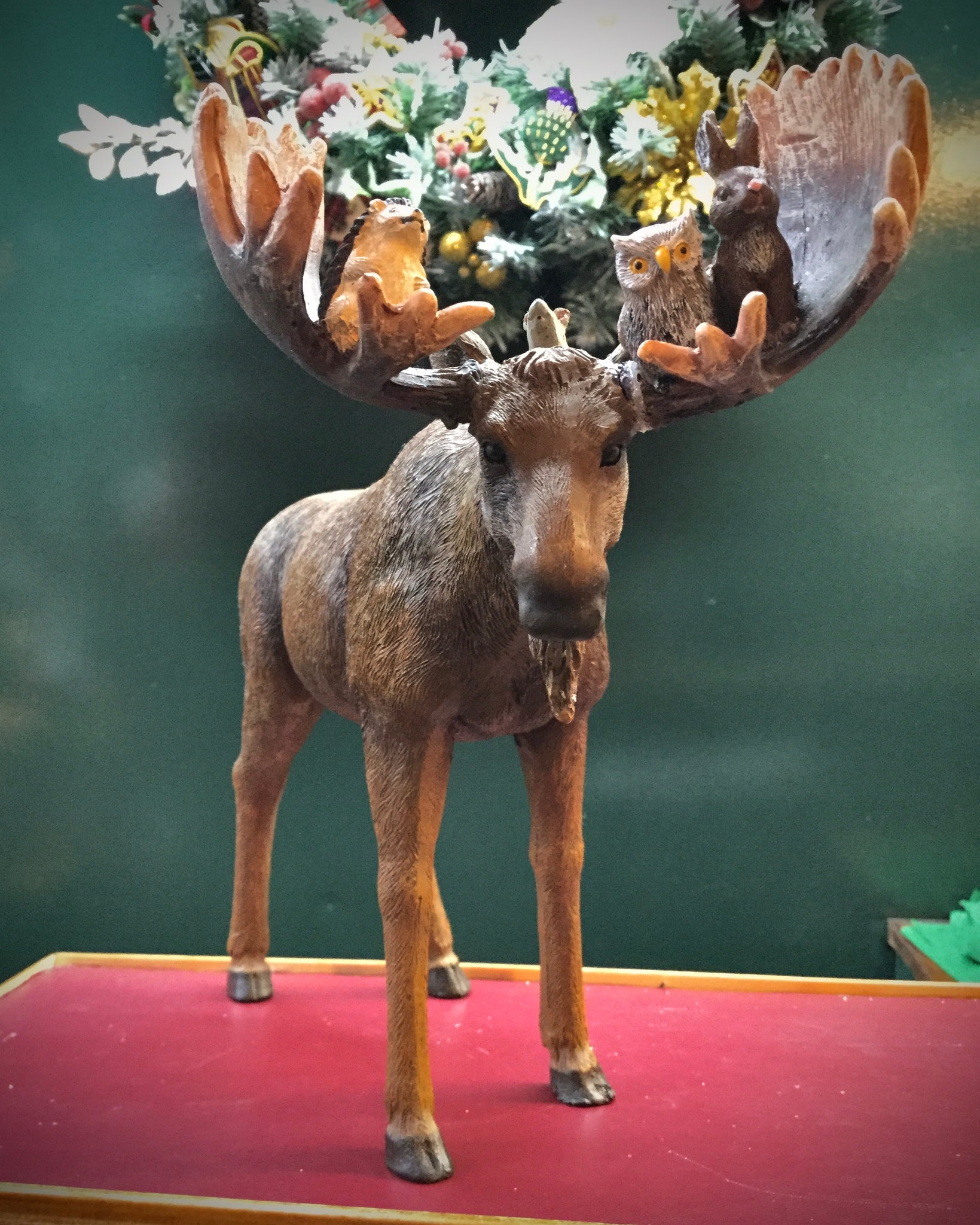 Moose with woodland animals