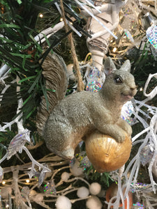 Grey Squirrel Hanging