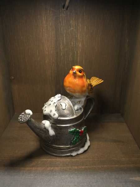 Robin in a Watering Can