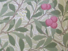 =Arbutus 214720 William Morris