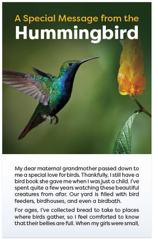 A Special Message From The Hummingbird