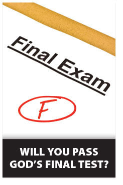 Final Exam (NET) (Preview page 1)