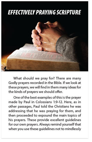 Effectively Praying Scripture (NIV) (Preview page 1)