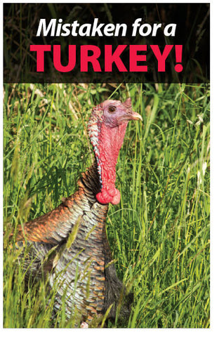 Mistaken For A Turkey! (NKJV) (Preview page 1)
