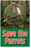 Save the Parrots (NLT) (Preview page 1)