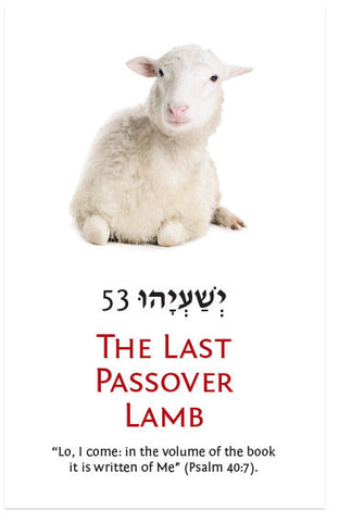 The Last Passover Lamb (KJV) (Preview page 1)