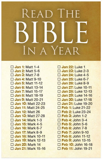 Read The Bible In A Year (Preview page 1)