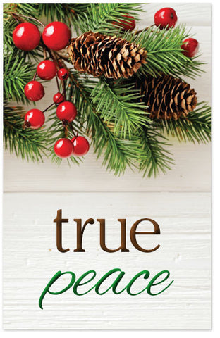 Christmas Gospel Tracts.Christmas Tracts Moments With The Book