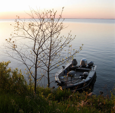 boat parked on the shore of Lake Winnibigoshish