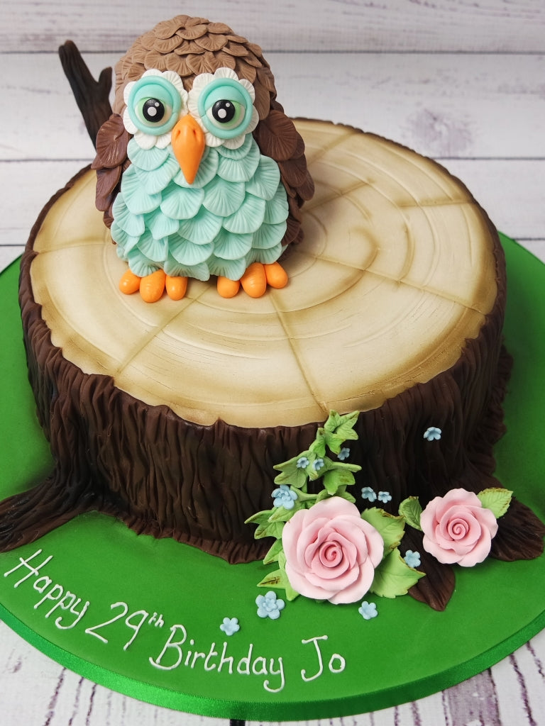 Amazing Crafty Cakes Exeter Uk Tree Trunk Cute Owl Cake Funny Birthday Cards Online Elaedamsfinfo