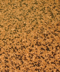 Select Line Cork Floor Santiago - Naturally Anti-Microbial Hypoallergenic Sustainable Eco-Friendly Cork