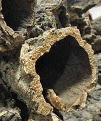 Virgin Cork Bark - Tubed (priced per kilogram) - Naturally Anti-Microbial Hypoallergenic Sustainable Eco-Friendly Cork
