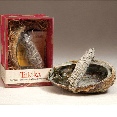 White Sage Smudge Set with Abalone Shell ,Fair Trade
