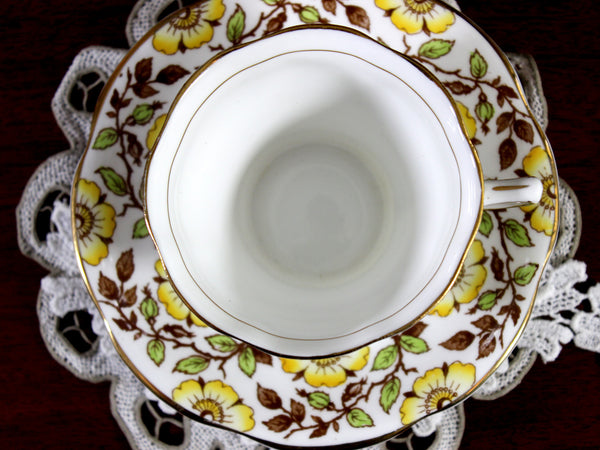 Rosina Chintz Banded Tea Cup and Saucer, English Bone China Teacup 12328 - The Vintage Teacup