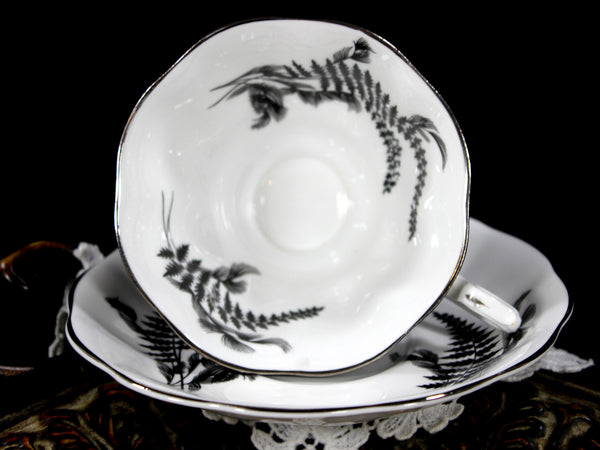 Stunning Royal Albert Black and White Fern Teacup, Avon Shaped Cup and Saucer 12815 - The Vintage Teacup - 2