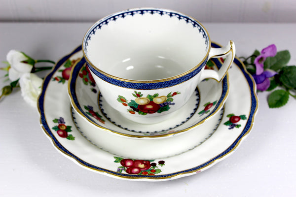 Vintage Tea Cup, Plate & Saucer, Booths Lowestoft Border, Trio with Fruit Motif 14532