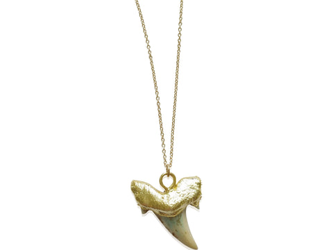 Gold Dipped Shark's Tooth Necklace - shopbanglejangle