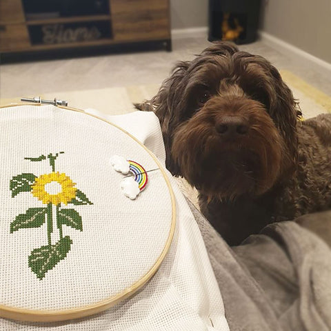 cross stitch pets flowers