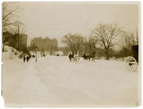 Vintage NYC Horses in Snow
