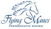Flying Manes Therapeutic Riding