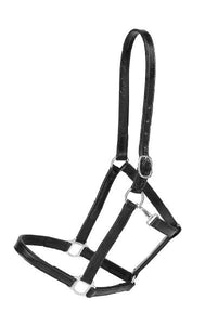 "3/4"" Halter-Halter-Tory Leather-Cob-Black-Manhattan Saddlery"