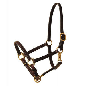 "3/4"" Halter-Halter-Tory Leather-Cob-Havana-Manhattan Saddlery"