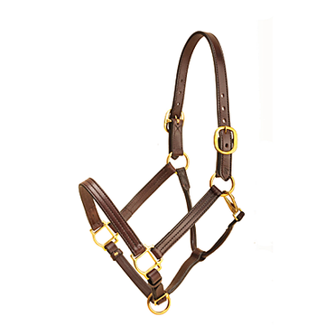 Triple Stitched Halter-Halter-Tory Leather-Cob-Havana-Manhattan Saddlery