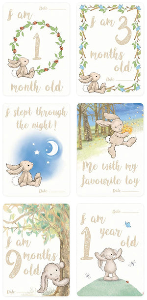 """Baby's First"" Bashful Bunny Photo Cards 