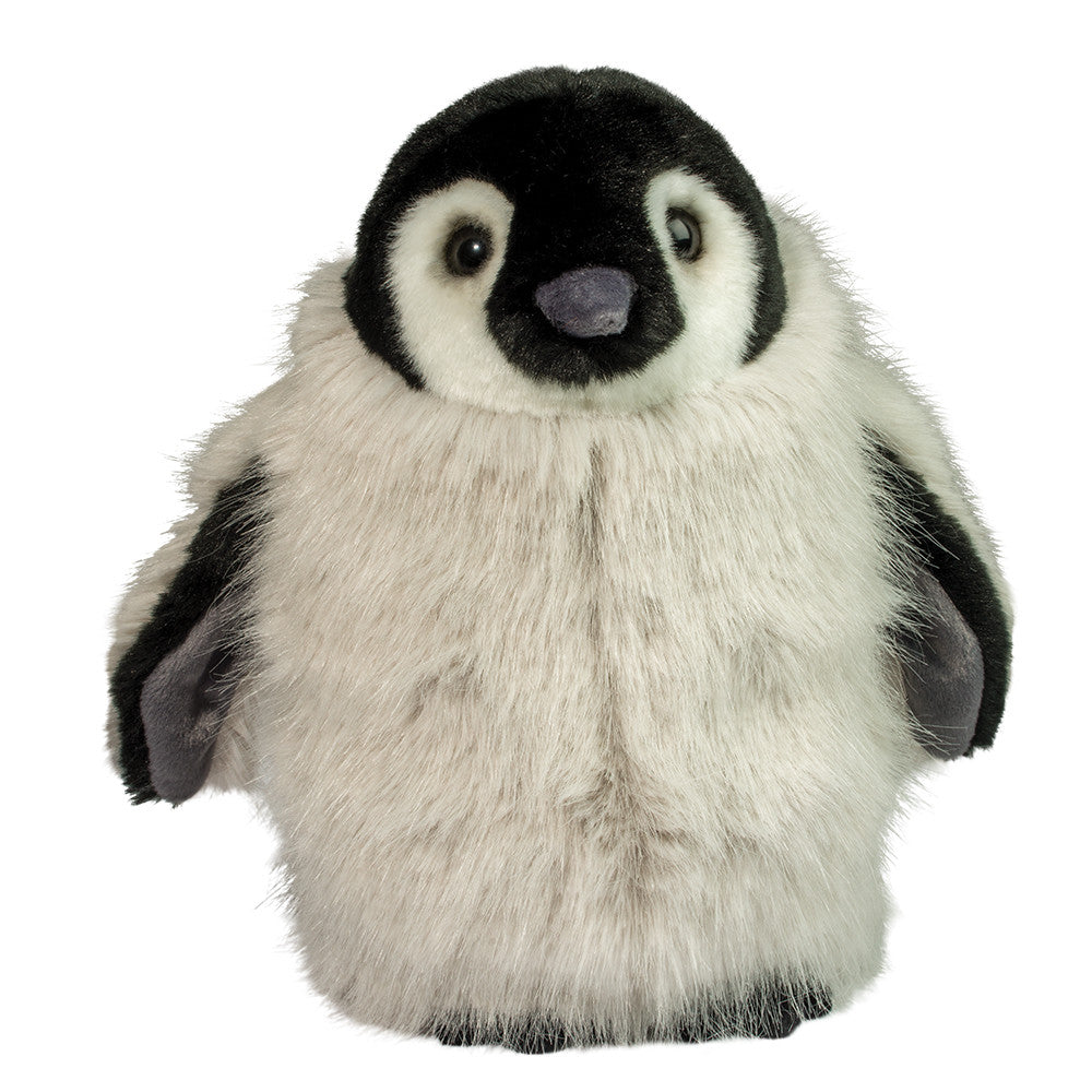 Powder Penguin Chick | Douglas Toys
