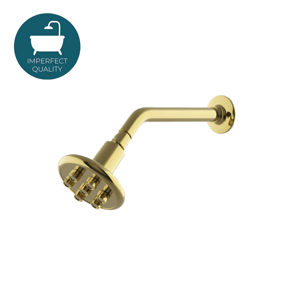 "Waterworks .25 4 1/4"" Shower Head, Arm and Flange in Unlacquered Brass"