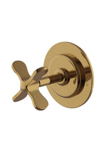 Waterworks Ludlow Two Way Diverter Valve Trim for Thermostatic in Antique Brass