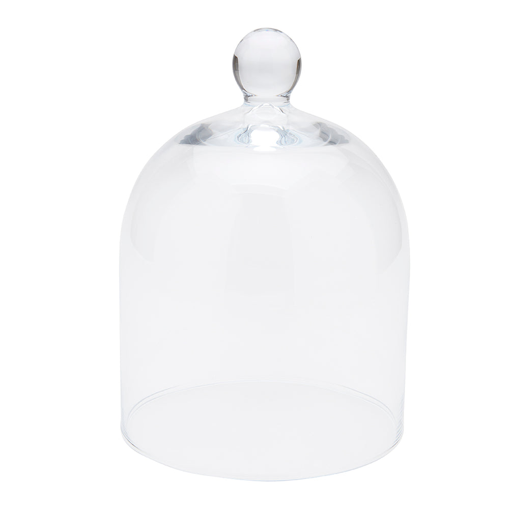 Apothecary Large Glass Cloche in Clear For Sale
