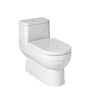 Waterworks Axel One Piece Dual Flush Watercloset in Modern White