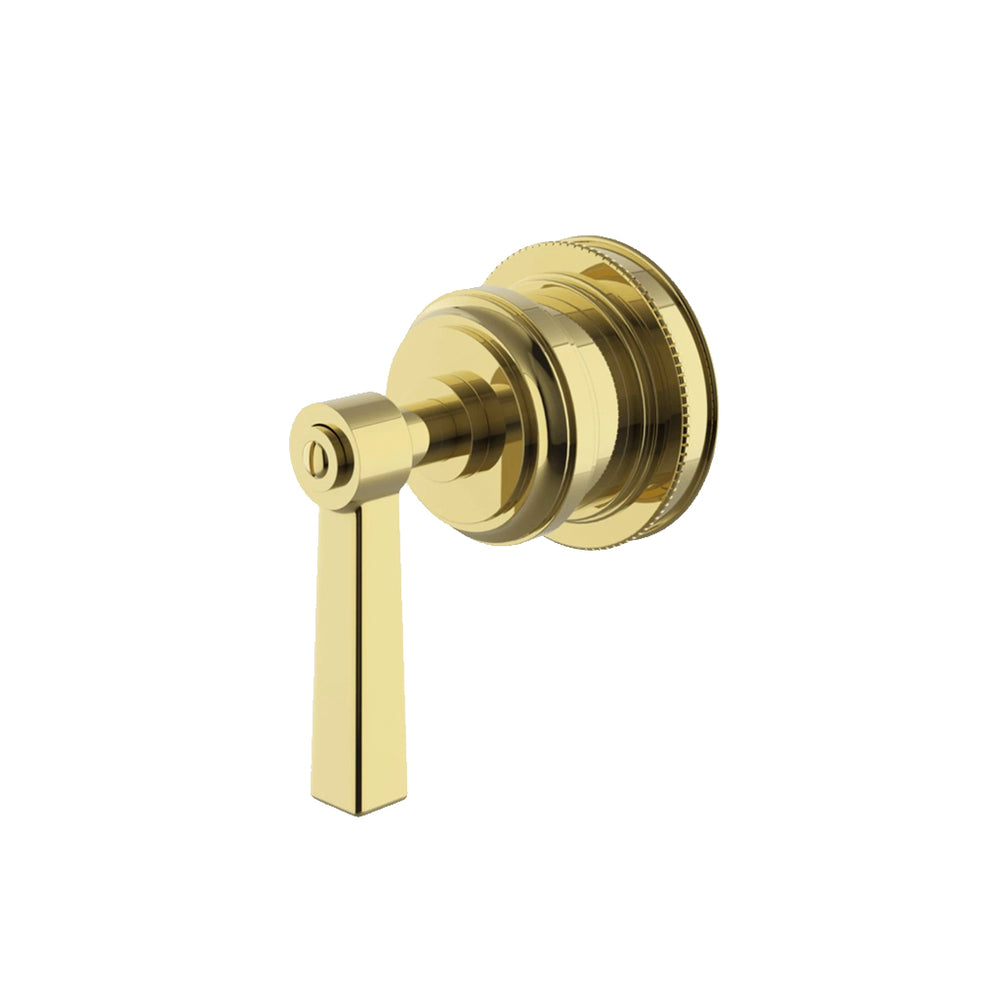 Waterworks Aero Volume Control Valve Trim with Metal Lever Handle in Unlacquered Brass