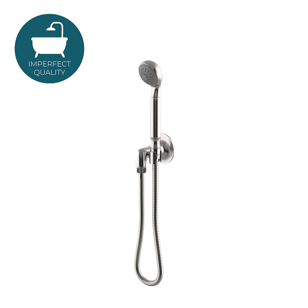 Waterworks Dash Handshower on Hook with Metal Handle in Matte Nickel