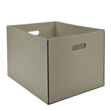 Waterworks Equus Rectangular Basket in Gray