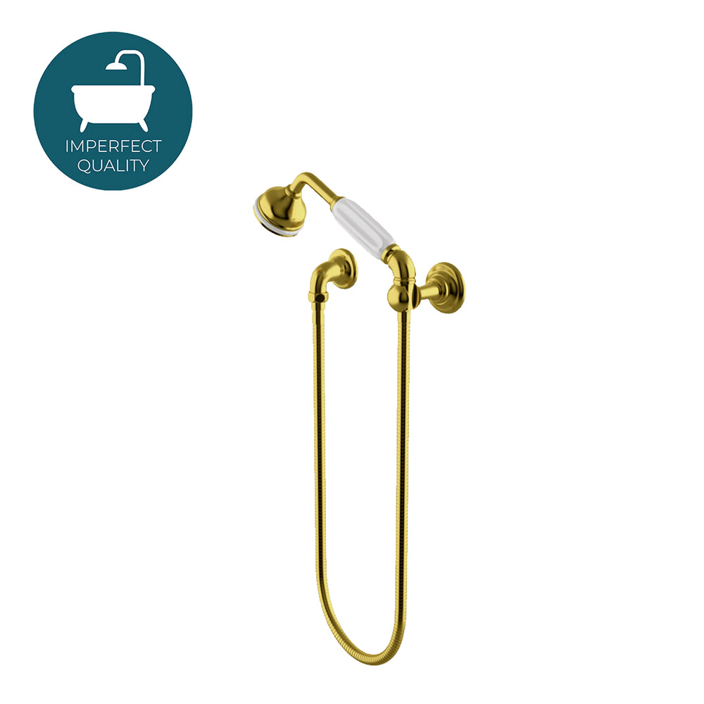 Waterworks Etoile Handshower on Hook in Brushed Gold