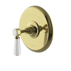 Waterworks Highgate Thermostatic Control Valve Trim  in Unlacquered Brass