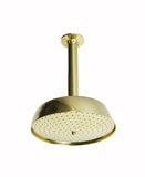 Waterworks .25 Ceiling Mounted Shower in Unlacquered Brass