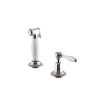 Waterworks Easton Classic Spray with Porcelain Lever Handle in Matte Nickel