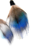 Feather Choker Blue