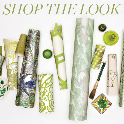 shop-the-look