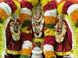 Srivari Kalyanotsava Pooja for Unmarried Men & Women