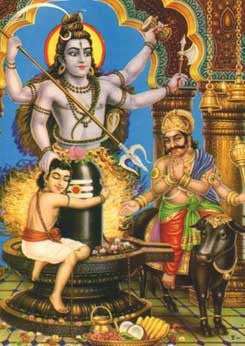 Mrityunjaya Homam (Remedy for Health &  Longevity)