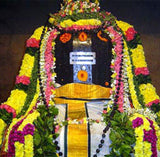 Shivarathri Special Rudra Abishekam and Pujas