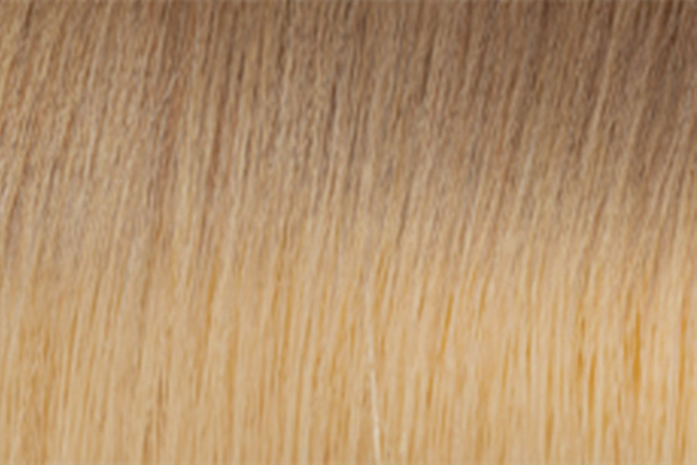 Tape In Extensions: Ombre #12/#22