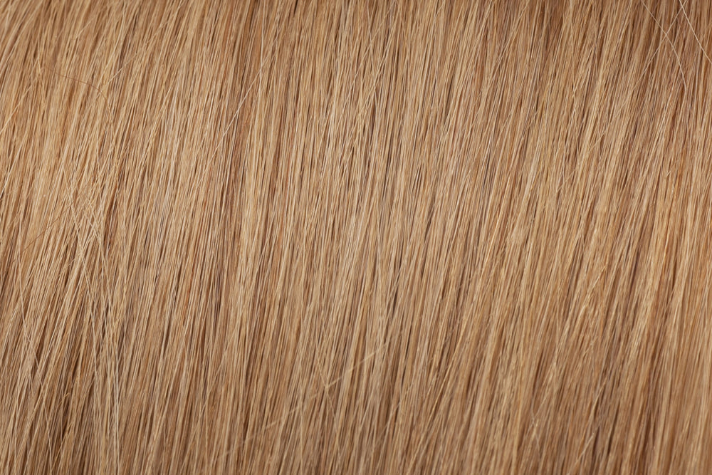 Clearance Item (20% off): #12W Weft Extensions