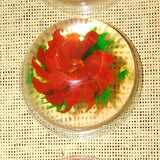 Gelatin Art Made By Kids
