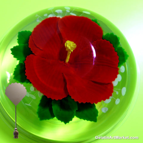 Gelatin Art Market News