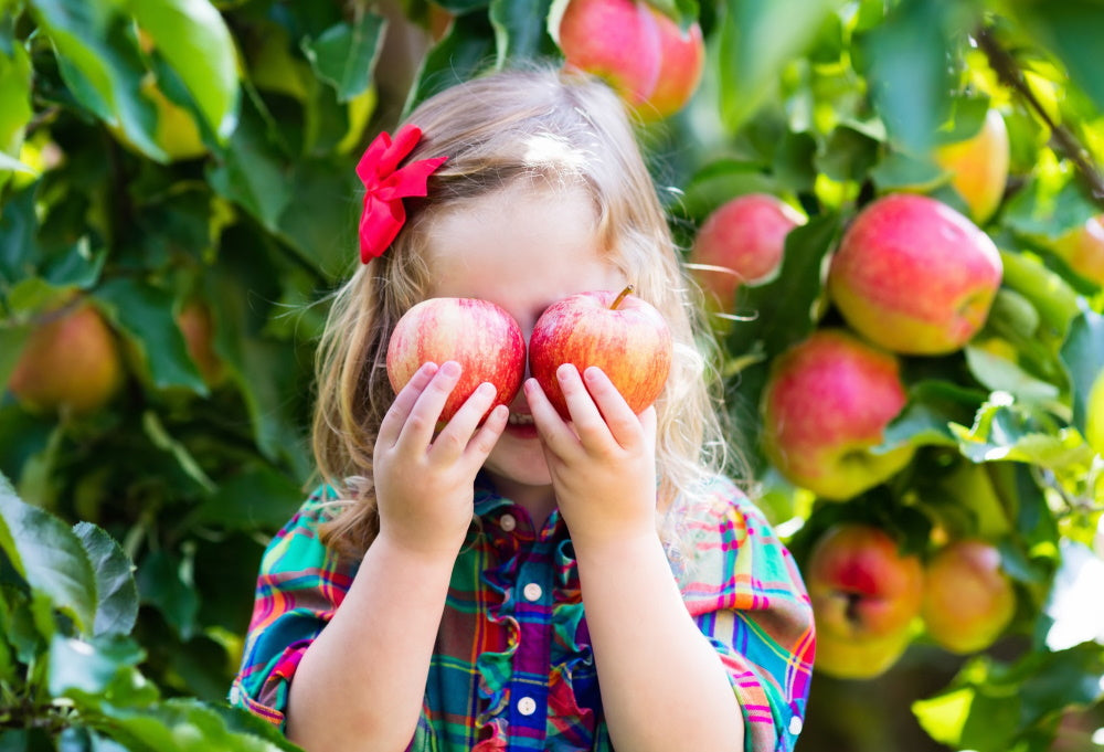 The Best Minnesota Apple Orchards to Bring Your Kids